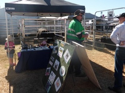 Great to see you at Beef Week 2015